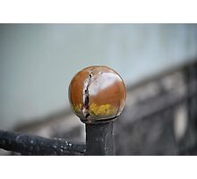 Railing knob Photographic Print