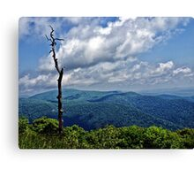 On the Blue Ridge Parkway Canvas Print
