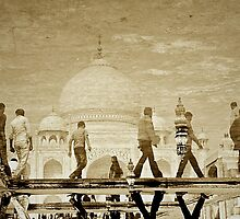 Boys of Taj by Valerie Rosen