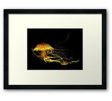 Underwater Art ~ Part Four Framed Print