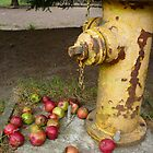 The Hydrant by Jess Meacham