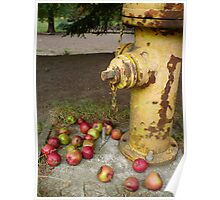 The Hydrant Poster