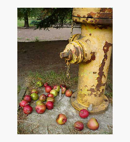 The Hydrant Photographic Print