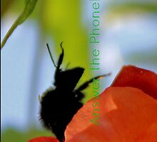 Bee in the Trumpet Flower [iPhone - iPod Case] by aprilann