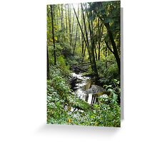 Sunny Creek Greeting Card