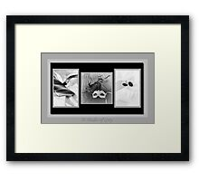 50 Shades Of Grey Framed Print