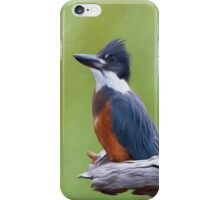 Ringed Kingfisher-Oil Painting iPhone Case/Skin