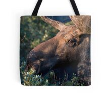 Moose portrait Tote Bag