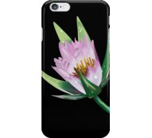 American Lotus Flower-Vector iPhone Case/Skin