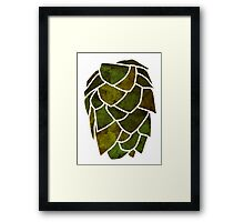 Hop Cone Framed Print