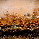 Rusty's wave by Susana Weber
