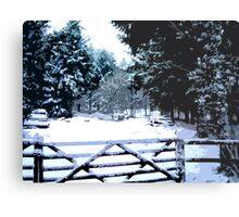 Gate in the Snow Metal Print