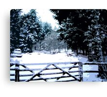 Gate in the Snow Canvas Print