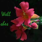 Get Well Wishes by Heather Friedman