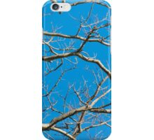 Leafless Tree Branches Against Blue Sky iPhone Case/Skin