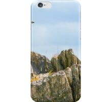 Crow On The Rocks iPhone Case/Skin