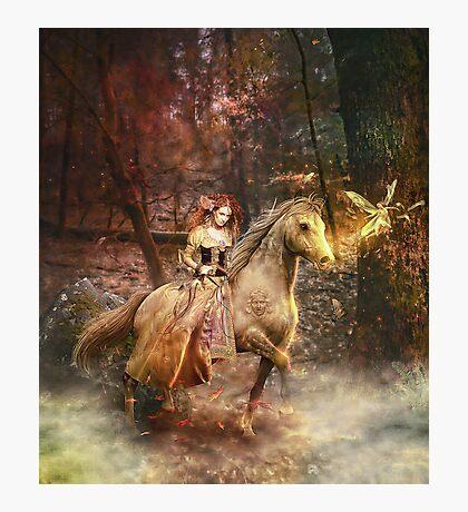 Gypsy Trail Photographic Print