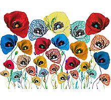 Vivid poppies Photographic Print