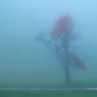Fog Tree by Angelika  Vogel