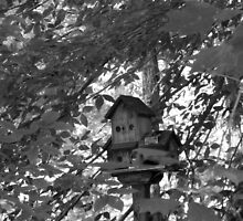 Little Birdhouse Hidden in the Woods by ThinkPics