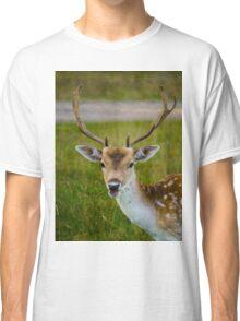 Fallow Deer Classic T-Shirt
