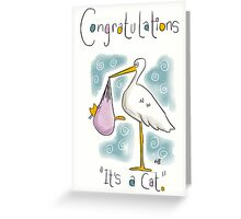 YOU GOTTA NEW CAT!  Greeting Card