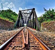 Bukit Timah Tracks by paulcowell