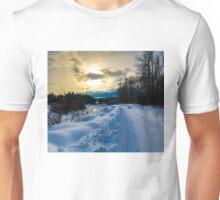 illecillewaet green belt  Unisex T-Shirt