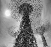 artificial trees in gardens by the bay, singapore by paulcowell