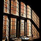 Window by Simon Duckworth