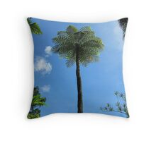 Tall Scaly Tree Fern, -cyathea cooperi- Cairns Botanic Gdns. Throw Pillow