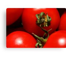 Red, Red Tomatoes Canvas Print