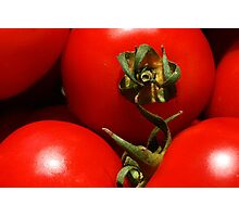 Red, Red Tomatoes Photographic Print