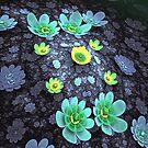 Lilies's Cascade by innacas
