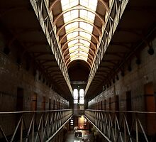 gaol by natalie angus