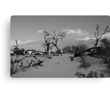 DeathValley Canvas Print