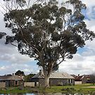 Westgarth Town by rjpmcmahon