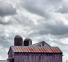 Amish Farm by Polly Peacock