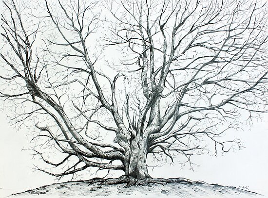 'Winter Tree at Bass Lake' by Jerry Kirk