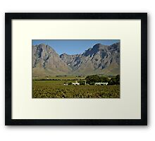 Western Cape farmlands Framed Print