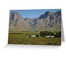 Western Cape farmlands Greeting Card