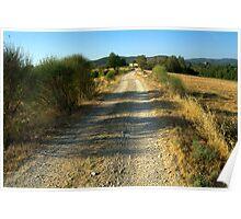 Tuscany, Italy, Arezzo Region Poster