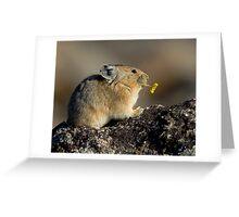 Trumpeting the Sunrise Greeting Card