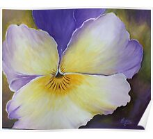 The heart of a Pansy- Acrylic Painting Poster