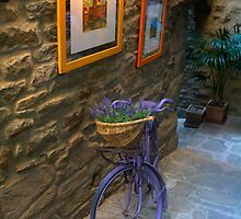 Tuscan Bicycle by newbeltane