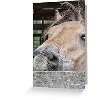 I'm having a bad hair day Greeting Card