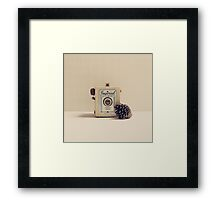 Retro - Vintage Autumn Camera and a Pine Cone on Beige Pattern Background  Framed Print