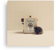 Retro - Vintage Autumn Camera and a Pine Cone on Beige Pattern Background  Canvas Print