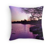 Sunset over Northlake Throw Pillow