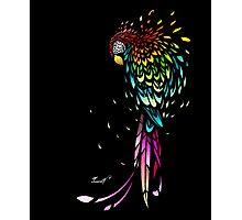 Parrot Broke Photographic Print